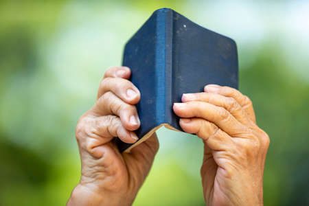 Senior woman reading a small navy blue colour book in bokeh garden background, Close up & Macro shot, Selective focus, Relax time