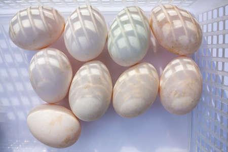 Nine duck eggs in white plastic basket on white background, Light & Shadow concept Stok Fotoğraf - 129307025