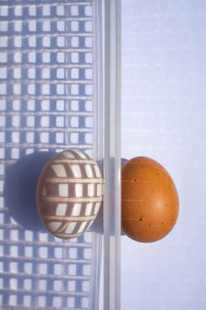 Duck egg and Chicken egg in white plastic basket on white background, Light & Shadow Concept Stok Fotoğraf