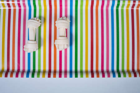 Two dog bones isolated on multicolored tray