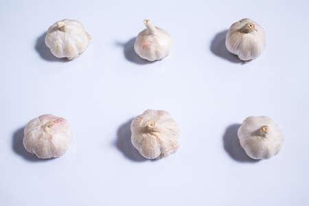 Garlic isolated on white background, Allium sativum isolated on white background