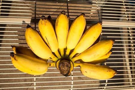 Cultivated banana on table Zdjęcie Seryjne