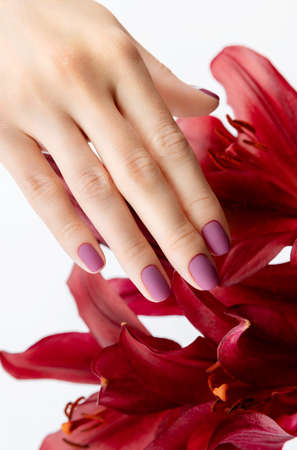 Beautiful womans hand with burgundy matte manicure with flower. Trendy spring summer nail design.