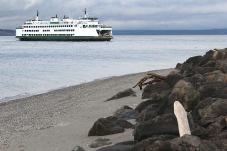 Ferry passing driftwood shaped like snake and spider. Stock Photo