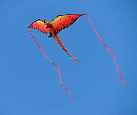 unbound: Dragon kite unbound against a clear blue sky.