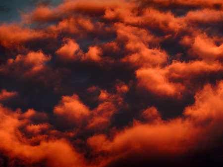 An unusual nest of fluffy clouds colored orange by the sunset.