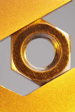 nut, golden  photo