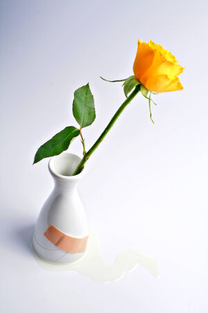 vase plaster: small yellow rose in broken, leaking white vase, scantily repaired with band-aid Stock Photo