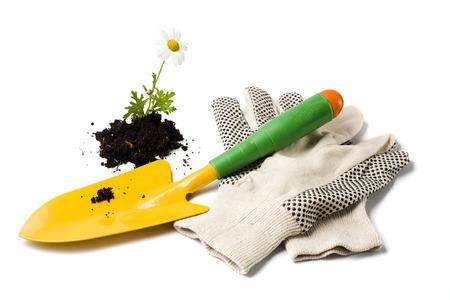 gardening gloves: yellow gardeners shovel, gardening gloves and marguerite flower in soil isolated on white Stock Photo