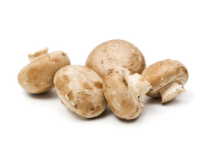 agaricus: five brown agaricus mushrooms isolated on white