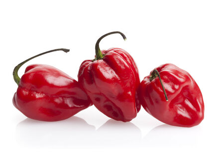 three red habanero chili peppers isolated on white photo
