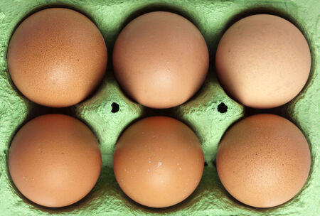 cloesup: cloesup of six brown eggs in green cardboard box, from above