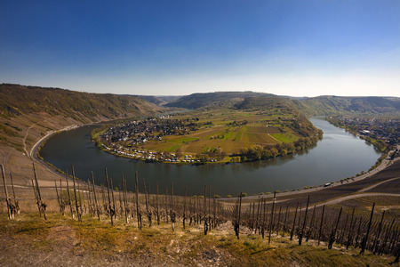 mosel: The Mosel valley seen from a vineyard at Krav