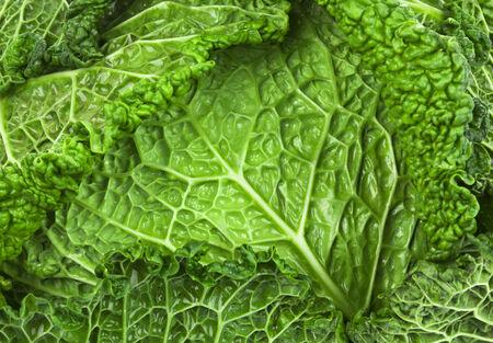 savoy cabbage: food background - savoy cabbage Stock Photo
