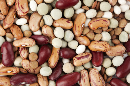 pinto bean: food background of mixed dried legumes