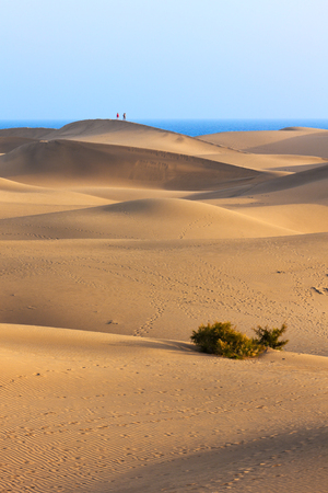grand canary: Dunes of Maspalomas, Grand Canary, tourist couple walking on the ridge of a large dune Stock Photo