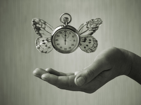 levitating: stopwatch with butterfly wings levitating above hand, black and white, slight green toning