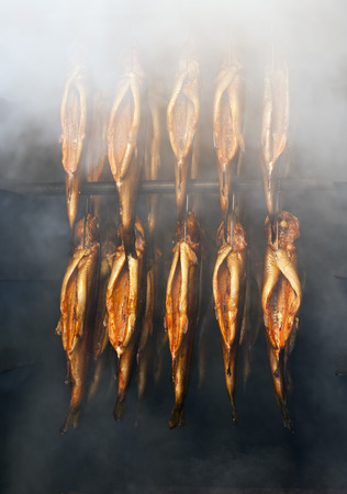 rainbow trouts in the smokehouse