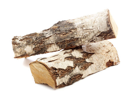 logwood: two pieces of birch logwood isolated on white