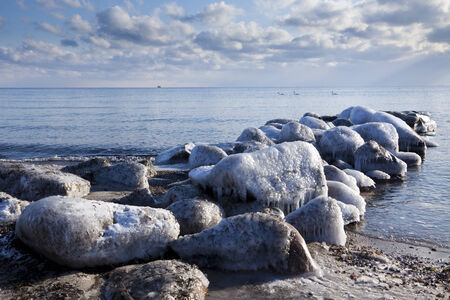 ice covered breakwater at baltic sea coast, three swans swimming by
