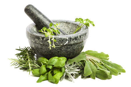 mortar and pestle, surrounded by a variety of fresh herbs, isolated on white background