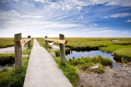 wadden sea: path through salt marsh at the Wadden Sea National Park Schleswig-Holstein Stock Photo
