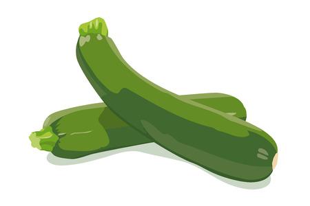 zucchini: Zucchini Vector Illustration Illustration