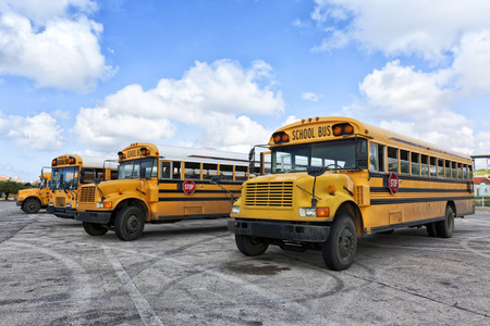 Four school buses waiting in parking lot