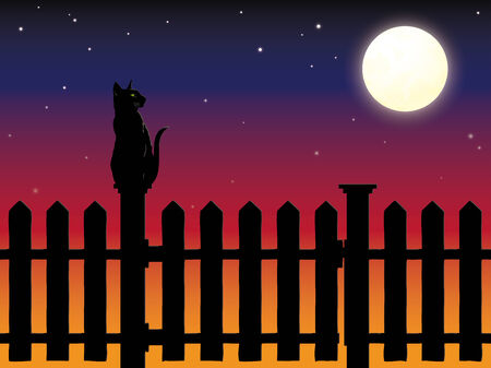 picket: Cat sitting on picket fence post in moonlight vector Illustration