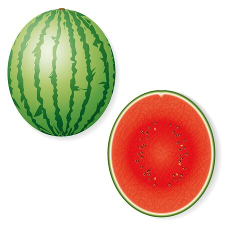 halved: Whole and Halved Watermelon Fruit Vector Icon Illustration