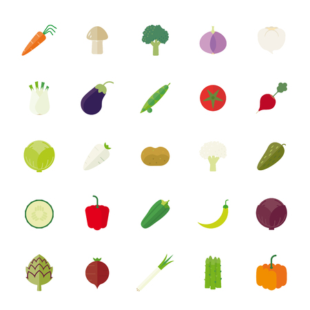 Vegetables Flat Design Isolated Vector Icon Set Vector