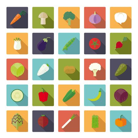 beet root: Vegetables Flat Design Square Vector Icon Set Illustration