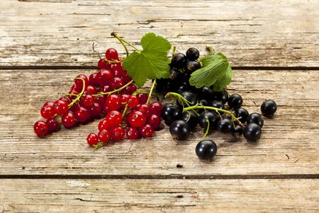 redcurrant: redcurrant and blackcurrant fruits on rustic wood background