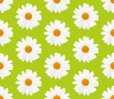 margriet: Naadloze patroon met marguerite daisy bloemen op groene achtergrond