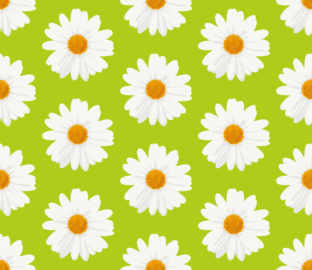 Seamless pattern with marguerite daisy flowers on green background