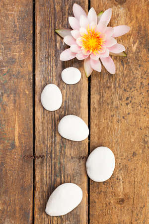 spa still life: Water lily and path of pebbles on rustic wooden background