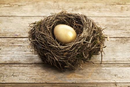 ヴィンテージの木製の背景に巣に金の卵