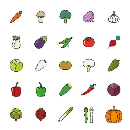 beet root: Collection of vegetables filled outline icons isolated on white background Illustration