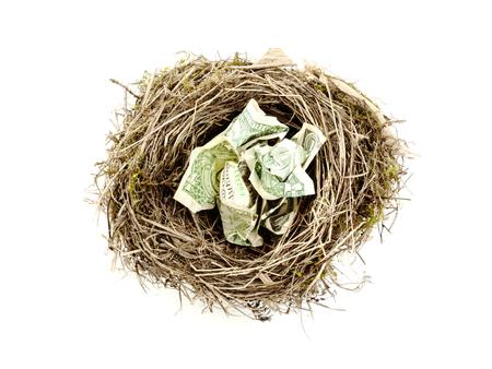birdnest: Bird nest with crumpled dollar bills on white background