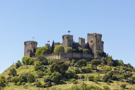 fortify: The medieval fortress at Almodovar de Rio