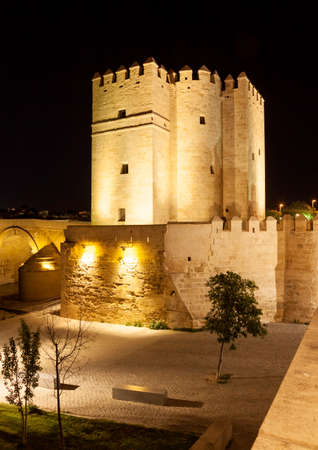 fortify: Night shot of fortified tower at the famous Roman Bridge, Cordoba, Spain