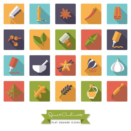 pepper grinder: Collection of spices, condiments, herbs and seasoning flat design long shadow square icons