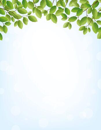 springtime: Background for springtime, border of leaves on top, large copy space