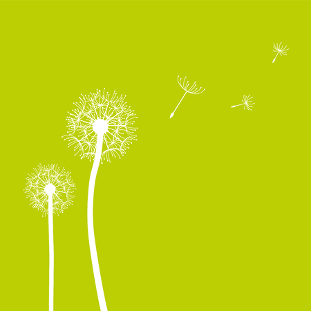 Dandelion seeds blowing in the wind spring background