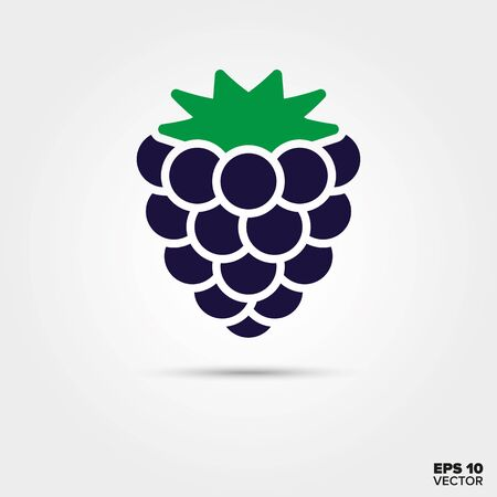 Blackberry or brambleberry fruit vector icon