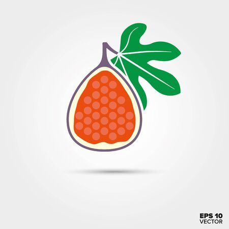 Half fig fruit with leaf vector icon