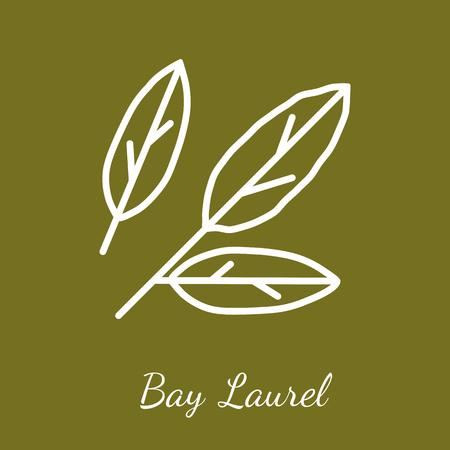 Bay laurel leaves icon. Flavoring spices vector symbol.