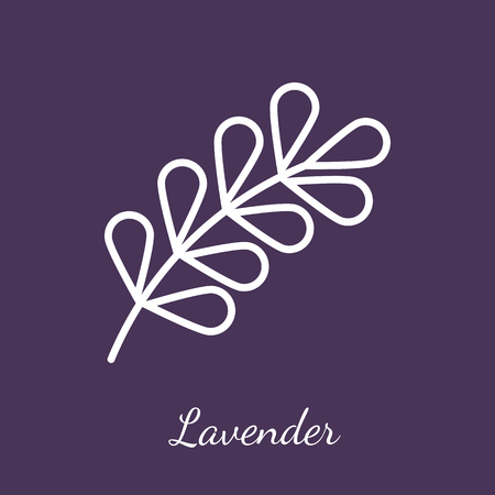 Lavender blossom icon. Flavoring spices vector symbol. Stock Vector - 112801309