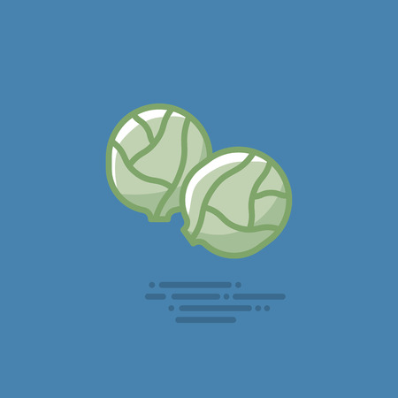 Brussels sprouts filled line icon. Healthy vegetable vector symbol. Illustration
