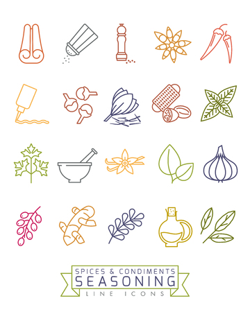 Spices, condiments and seasoning vector color line icon set